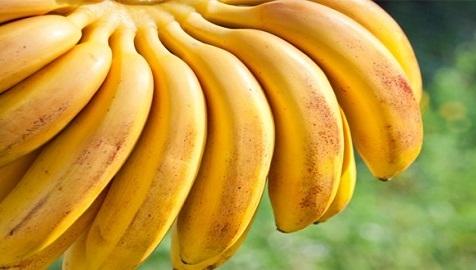 أسرار الموز الغذائية
