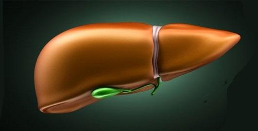 معلومات تهمك عن التهاب الكبد