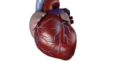 الاستماع إلى الموسيقى يساعد فى شفاء مرضى القلب