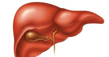 احذر زيادة حجم البطن فقد يكون نتيجة الإصابة بأمراض فى الكبد