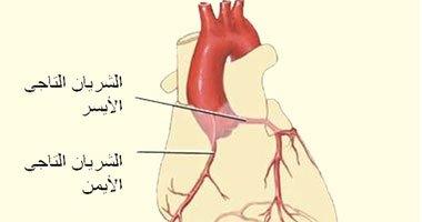 ارتفاع ضغط الدم والتدخين والسمنة أهم عوامل الإصابة بأمراض الشرايين