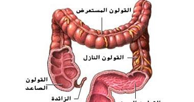 دراسة أمريكية: فيتامين D قد يطيل عمر مرضى سرطان القولون