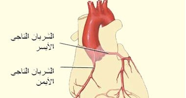 قصور الشريان التاجى من أسباب بطء ضربات القلب