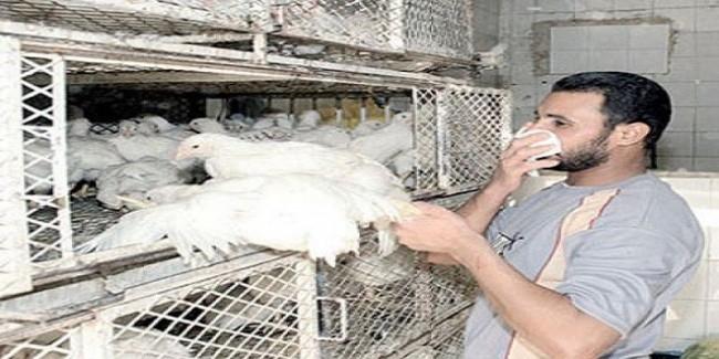 وزارة الصحة تعلن وفاة حالتين بأنفلونزا الطيوروشفاء 3 أطفال