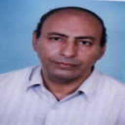 عبدالحميد محمد الشرقاوى