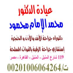 محمد الامام محمود