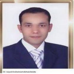 السيد محمد الشندويلى
