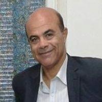 أ.د/محمد الامام محمود