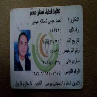 أحمد عيسى شحاته