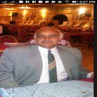 د.اسامه كمال عبد الرحمن