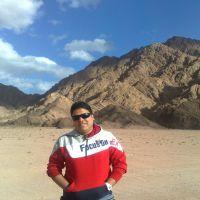 محمد محمد الحبشي