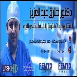 طارق عبد العزيز