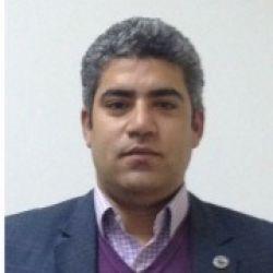 محمد زكي عبد الهادي