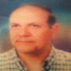 محمد حنفى يونس