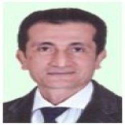 عمرو عبدالرحمن بيبرس