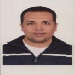 عصام محمد الحفناوى