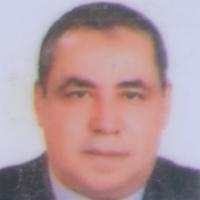 محمد حسام مغربى