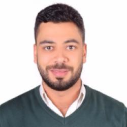 أحمد فوزى الطناحى