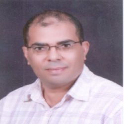 ا.محمد وائل محمد مصطفي